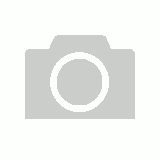KIDS WATCH To and Past Teaching Dial Water Resistant 50m BLUE Band